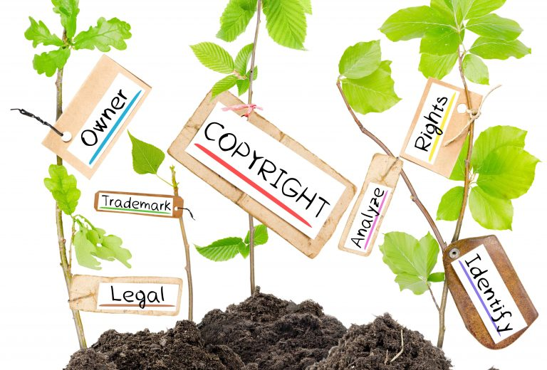 How Long Does a Plant Patent Last?