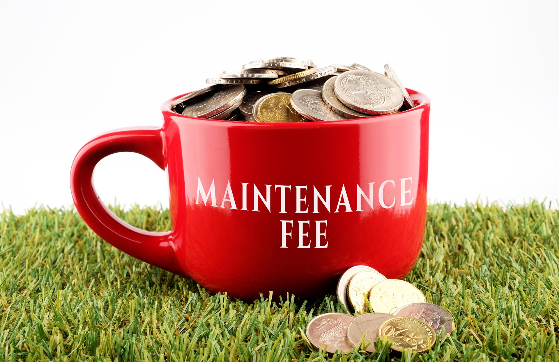 What are patent maintenance fees?